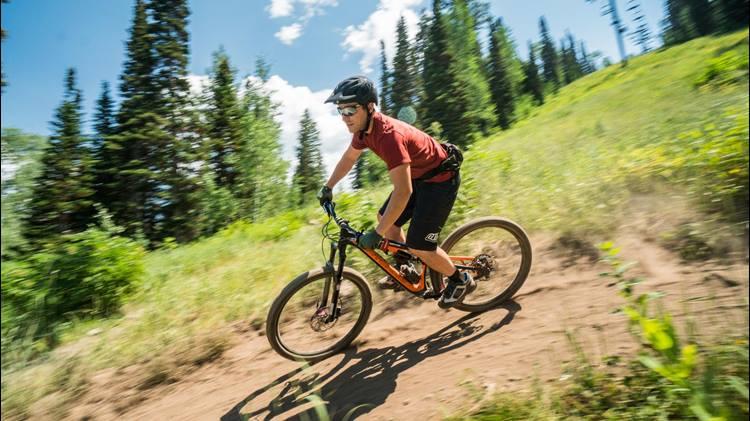 Image result for mountain biking